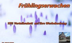 Mit dem Medienportal-Grimma in den Frühling starten! Jetzt informieren!